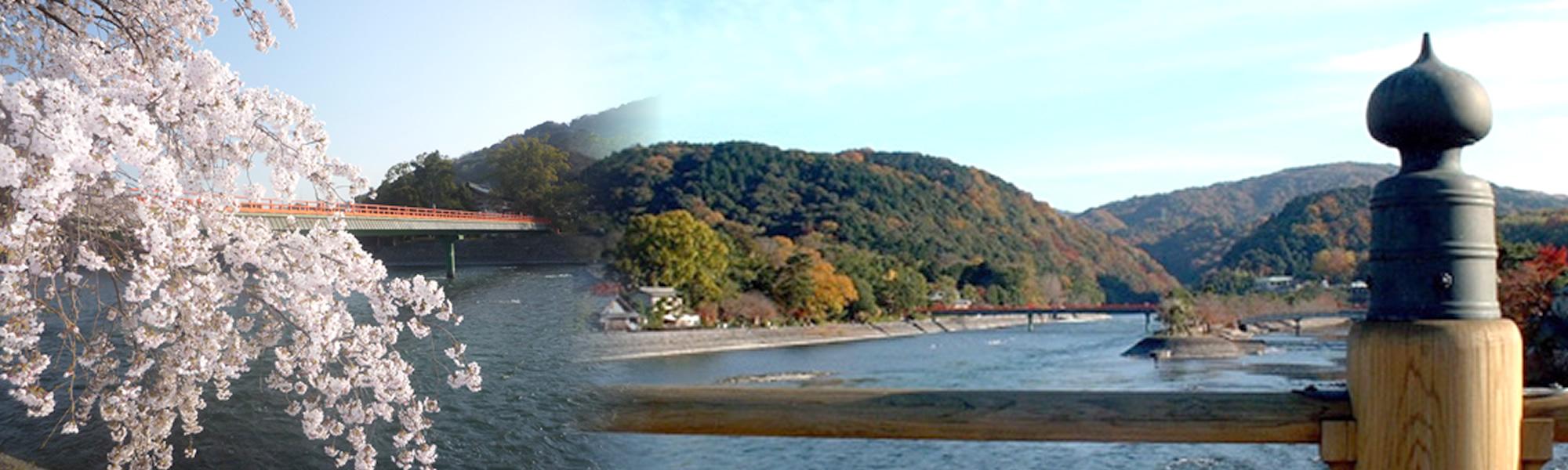 コロナ ホーム 京都 老人